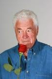 玫瑰色气味 免版税库存照片