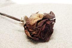 玫瑰色沙子 免版税库存图片