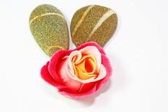 玫瑰色温泉禅宗 免版税库存照片