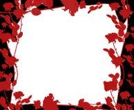 玫瑰色的边界 免版税库存照片