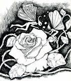 玫瑰色的魔术和神仙 库存图片