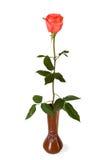 玫瑰色花瓶 库存照片