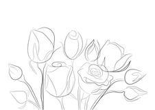 玫瑰色草图 库存照片
