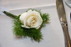 玫瑰色设置表白色 免版税图库摄影