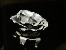 玫瑰色银 免版税库存图片