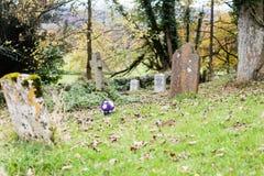 玫瑰花束在公墓的 免版税库存图片