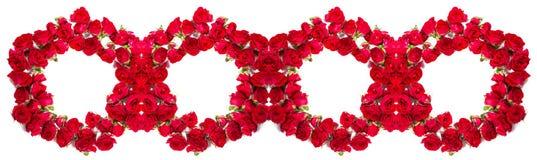 玫瑰花束被安排形成圆环或设计元素花卉题材的 免版税库存图片