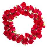 玫瑰花束被安排形成花卉题材的一个圆环或设计元素 库存照片