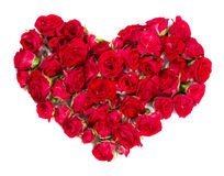 玫瑰花束被安排形成花卉题材的心脏或设计元素 免版税库存图片
