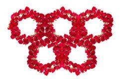 玫瑰花束被安排形成olimpic圆环或设计元素花卉题材的 库存照片