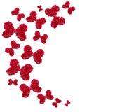 玫瑰花束-设计花卉题材的元素 库存照片