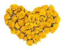 玫瑰花束-设计花卉题材的元素 库存图片