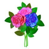 玫瑰花束 向量例证