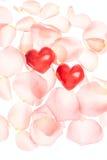玫瑰花瓣和心脏华伦泰光背景 库存照片