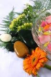 玫瑰花瓣和温泉 库存照片