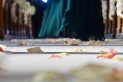玫瑰花瓣在婚姻的小岛离开,婚姻客人褂子 免版税图库摄影
