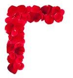 玫瑰花瓣壁角框架 图库摄影