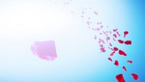 玫瑰花瓣天空背景(圈) 股票视频