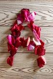玫瑰花瓣字母表 免版税图库摄影