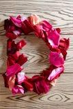 玫瑰花瓣字母表 免版税库存图片
