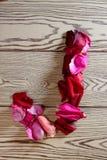 玫瑰花瓣字母表 库存图片