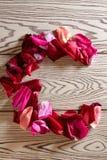 玫瑰花瓣字母表 免版税库存照片