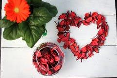 玫瑰花瓣室内花和心脏形状  免版税库存照片
