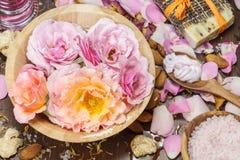 玫瑰花瓣温泉 库存照片