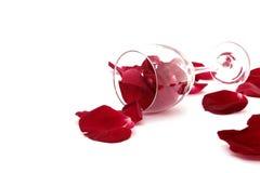 玫瑰花瓣,在白色背景隔绝的酒杯 图库摄影