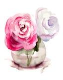 玫瑰花,水彩例证 免版税库存照片