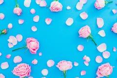 玫瑰芽和瓣花卉框架在蓝色背景 平的位置,顶视图 桃红色玫瑰花纹理 免版税库存照片