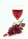 玫瑰酒红色 库存图片