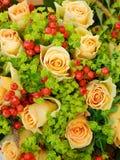 玫瑰黄色 免版税库存图片