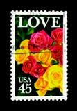 玫瑰,爱问题serie,大约1988年 库存照片
