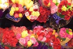 玫瑰,玫瑰,玫瑰 库存图片