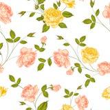 玫瑰,花卉背景,无缝的样式。 向量例证