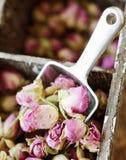 玫瑰,茶, karkade的小干燥芽,在木箱,选择聚焦 库存图片