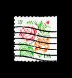 玫瑰, 1975-1981规则问题serie,大约1978年 免版税库存照片