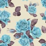 玫瑰9 免版税库存图片