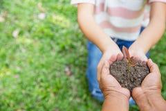 环境世界地球日,拿着在自然领域草,森林保护的老妇人和年轻女人的手树,生态 免版税库存图片
