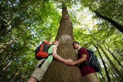 环境保护: 拥抱结构树的远足者 库存图片