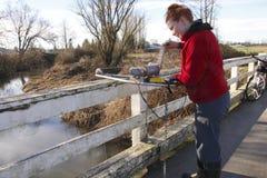 环境加拿大技术员 库存图片