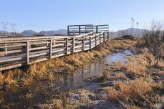 环境友好的自然道路 免版税库存照片