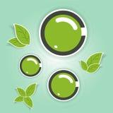 环境友好的绿色圈子 向量例证