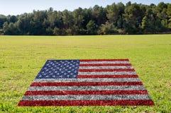 环境的保护在美国 免版税图库摄影