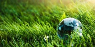 环境的绿色行星概念 库存照片