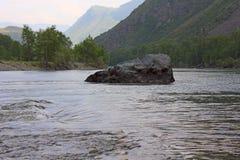 环境美化与一块大石头在水中 免版税库存照片