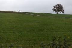 环境美化与可见地平线在与indi的一有雾的11月天 免版税图库摄影