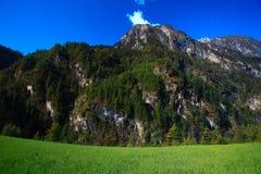 环境美化与在山的被操刀的领域篱芭 库存照片
