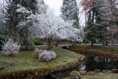 环境美化与在秋天季节的小桥梁 免版税图库摄影